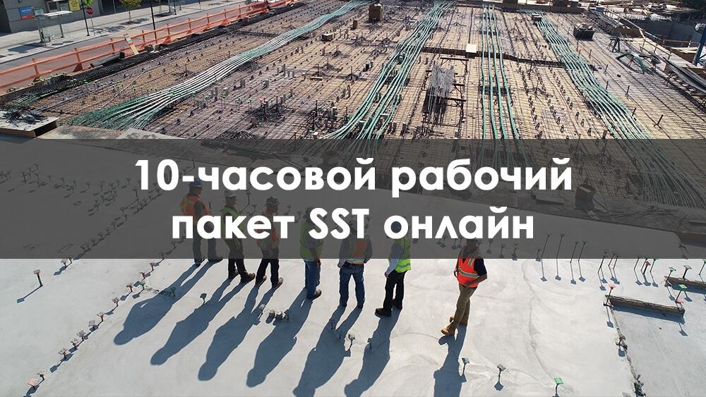 10 Часовой sst dob Онлайн Тренинговый Пакет Для Работников