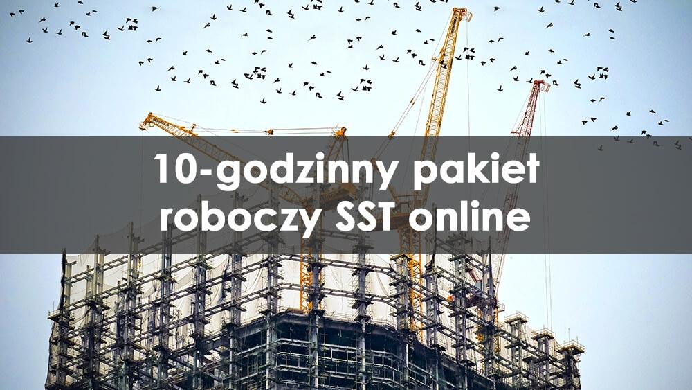 10 godzin zatwierdzonego szkolenia SST DOB online